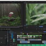 Movie Editing with Adobe Premiere