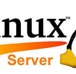 Linux Server Environment
